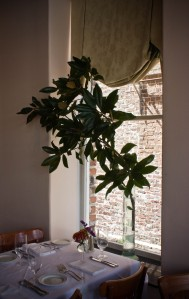 magnolia interior window