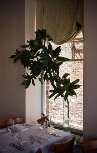 magnolia interior window